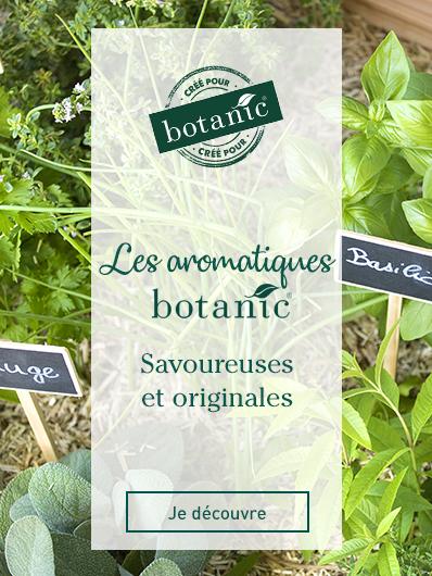 aromatiques-botanic