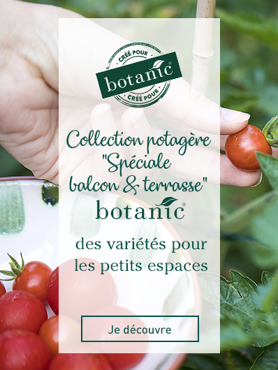 collection-speciale-balcon-terrasse-botanic