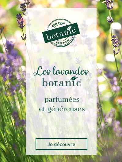 collection-lavandes-botanic