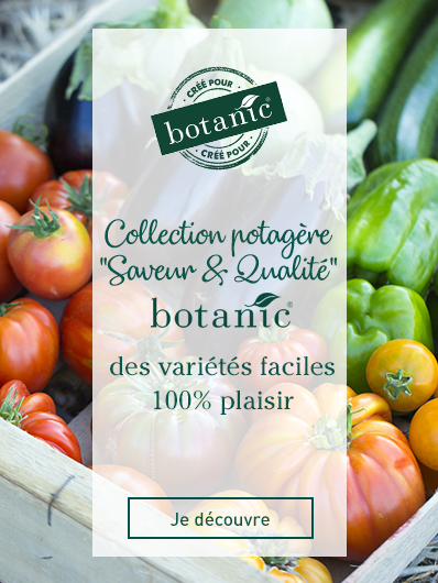 collection-saveur-qualite-botanic