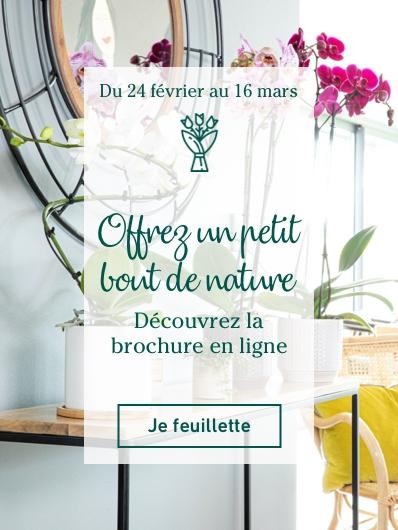 brochurebeauxjours_push