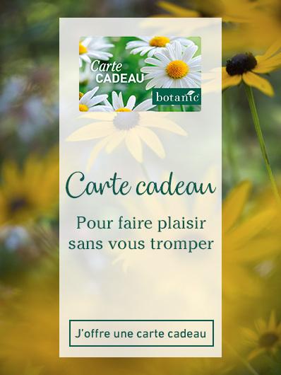 carte-cadeau-botanic