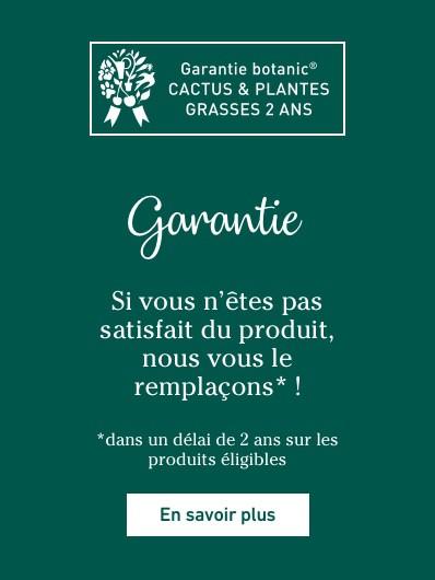garantie-cactees-plantes-grasses_push