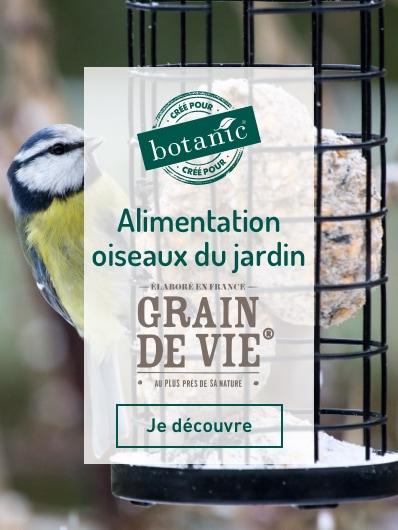 Découvrez notre marque exclusive botanic® Grains De Vie