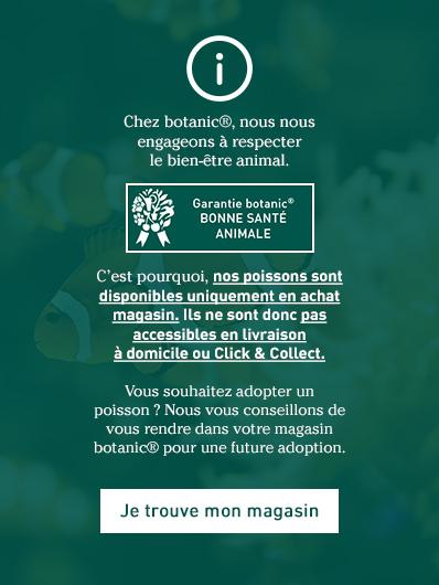 animalerie-vivante-botanic