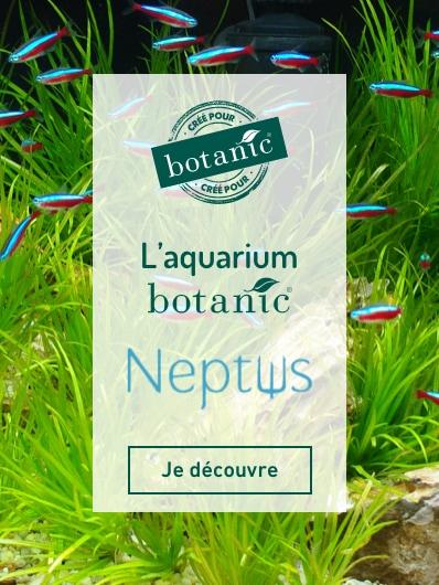 Découvrez Neptus la marque exclusive botanic® autour de l'aquariophilie. Je découvre !