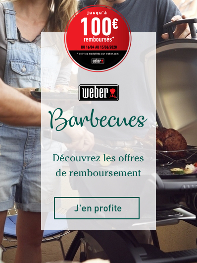 odr-weber-barbecues""