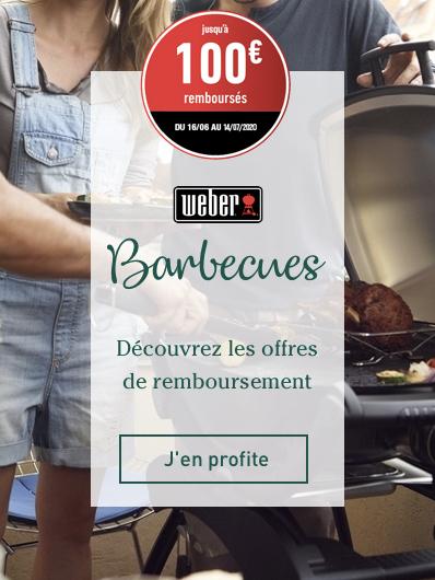 """odr-weber-barbecues"""""""