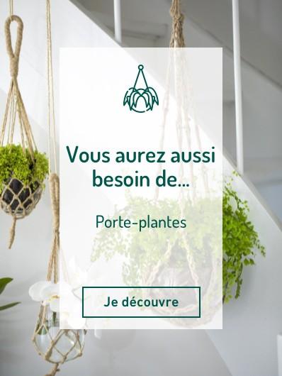 porte_plantes