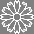 Pictogramme Botanic - Agapanthes