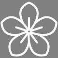 Pictogramme Botanic - Les floraisons d'hiver