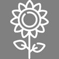 Pictogramme Botanic - Plantes et fleurs méditerranéennes