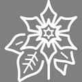 Pictogramme Botanic - Poinsettias