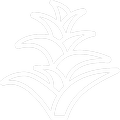 Pictogramme Botanic - Tillandsias