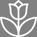 Pictogramme Botanic - Bulbes de fleurs