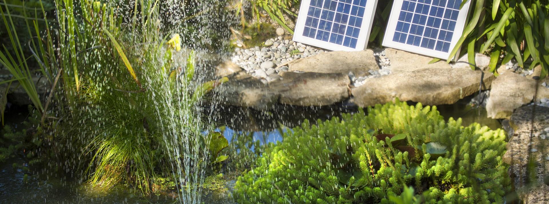Création de bassin de jardin