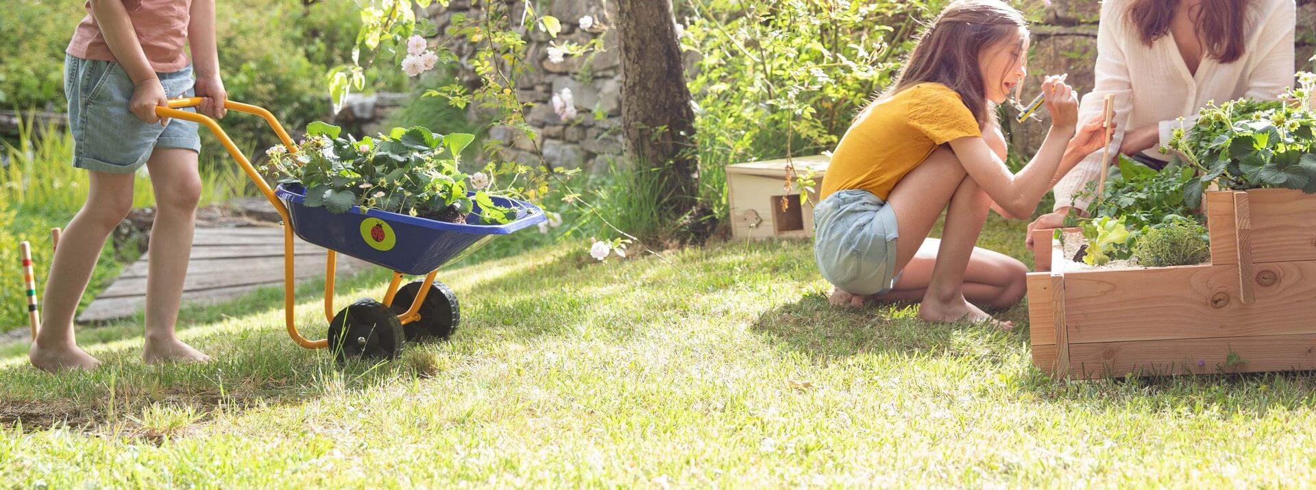 Brouettes de jardin, chariots et accessoires