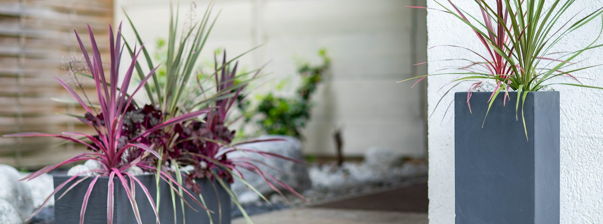 La collection patio botanic