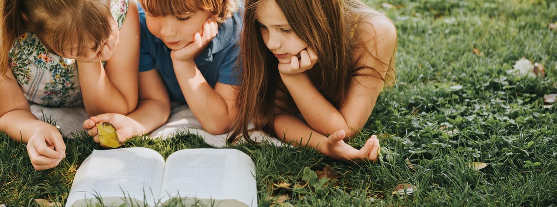 Livres et jeux pour enfant autour du jardin