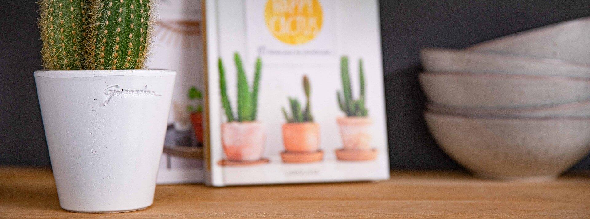 Livres plantes d'intérieur
