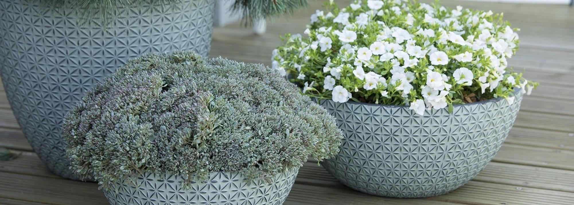 Notre sélection de pots et jardinières