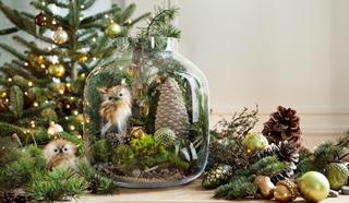 Tout l'univers Noël