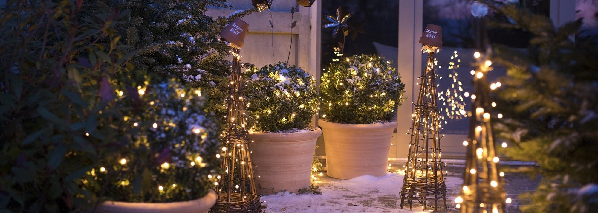 Etoile De Noel Plante Exterieur décorations lumineuses : décorations lumineuses et