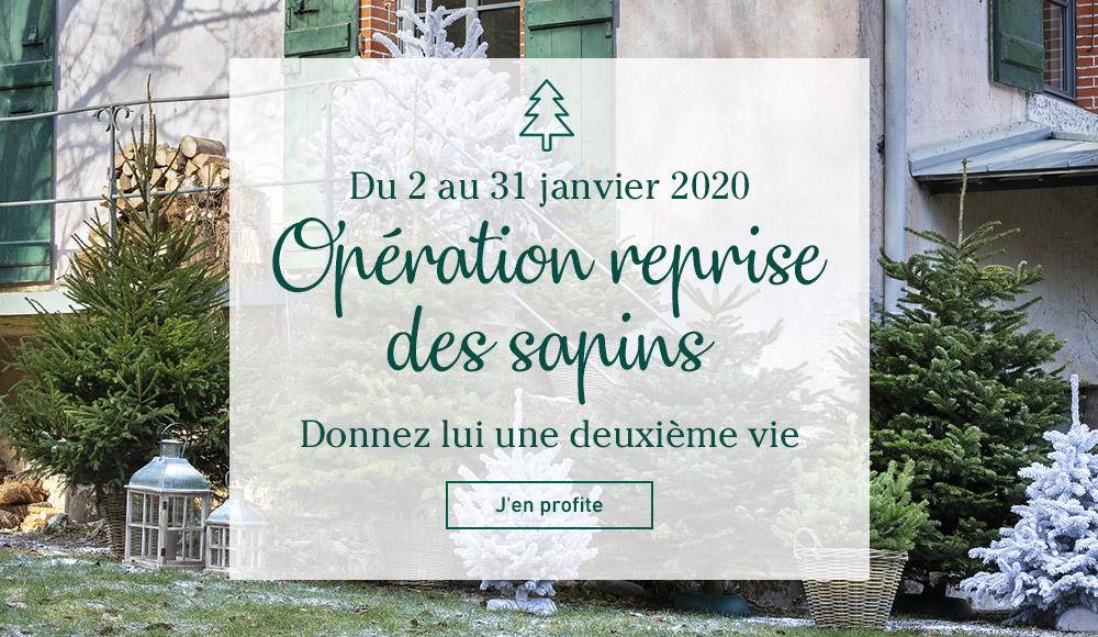 Botanic Jardinerie écologique Animalerie Décoration