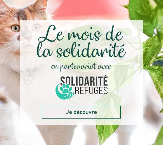 Edito_operation-solidarite-refuge