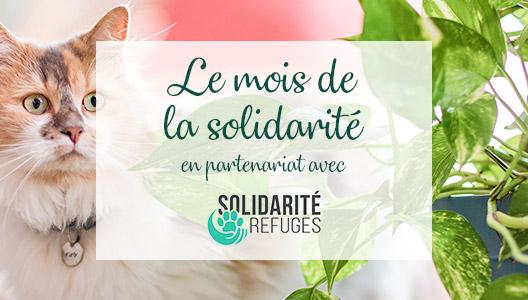 Le mois de la solidarité