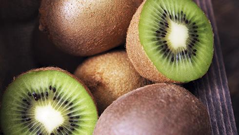 Comment planter le kiwi?