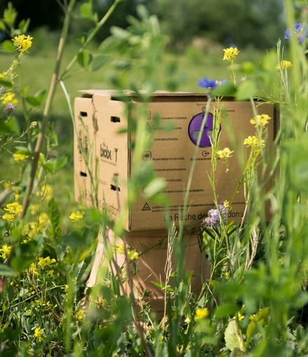 Ma première ruche à bourdons : les conseils botanic®