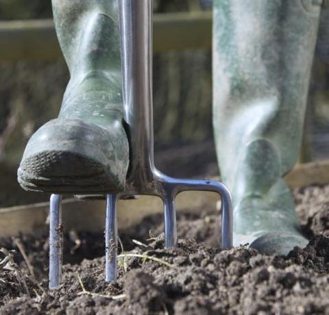 Semis et culture : de l'épanouissement dans l'air… et sous terre!