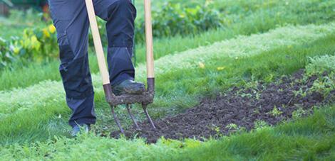 preparer-le-jardin-pour-le-printemps_3