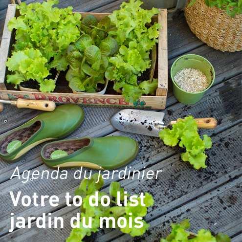 Potager pour balcon botanic jardini res sur pieds pour for Conseil du jardinier
