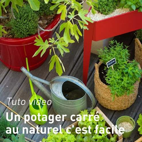 Potager pour balcon botanic jardini res sur pieds pour - Creer son jardin en ligne ...