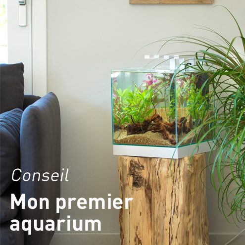 aquarium botanic nos boules aquarium cubic et accessoires botanic. Black Bedroom Furniture Sets. Home Design Ideas