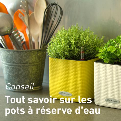 pots r serve d 39 eau pots et contenants plantes d 39 int rieur et maison botanic. Black Bedroom Furniture Sets. Home Design Ideas