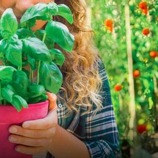 BlocConseil_vivons-une-rentree-sans-pesticides-et-sans-pareil-resultats