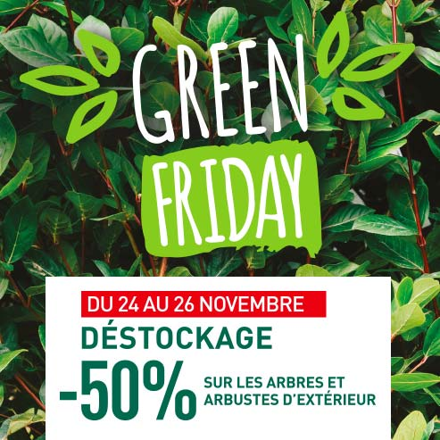 BlocConseil_green-friday