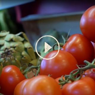 BlocConseil_capsule_les-fruits-et-legumes-bio