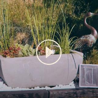 BlocConseil_capsule_mon-premier-jardin-d-eau
