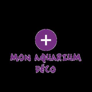 Notre sélection d'aquariums et accessoires