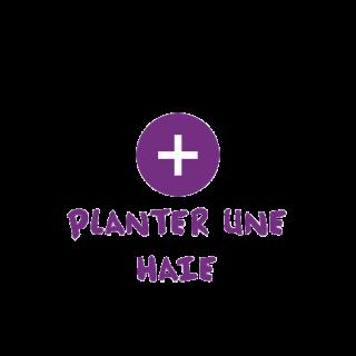 BlocConseil_categorie_arbustes-de-haie