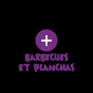 BlocConseil_categorie_barbecue-et-planchas