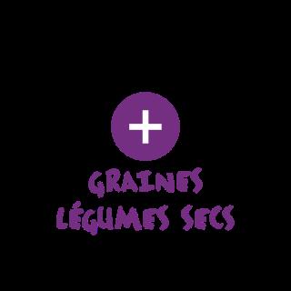Notre sélection de graines