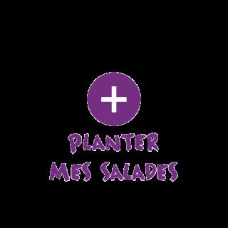 BlocConseil_categorie_plants-potagers