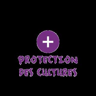 BlocConseil_categorie_serres-et-protection-des-cultures