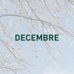 Découvrez votre agenda pour les autres mois de l'année