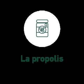 aide-au-choix-produits-de-la-ruche_2_3
